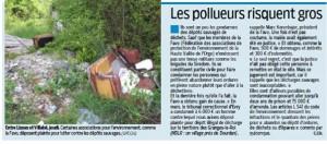 Article Essonne matin
